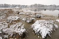 Driessenven in winter PVH2-8562