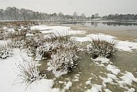 Driessenven in winter PVH2-8565