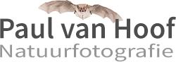 Paul van Hoof